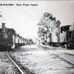 Petit Train Etables-sur-Mer Trains à vapeur